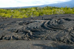 Ropey pahoehoe lava