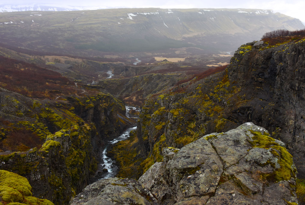 Looking down the canyon