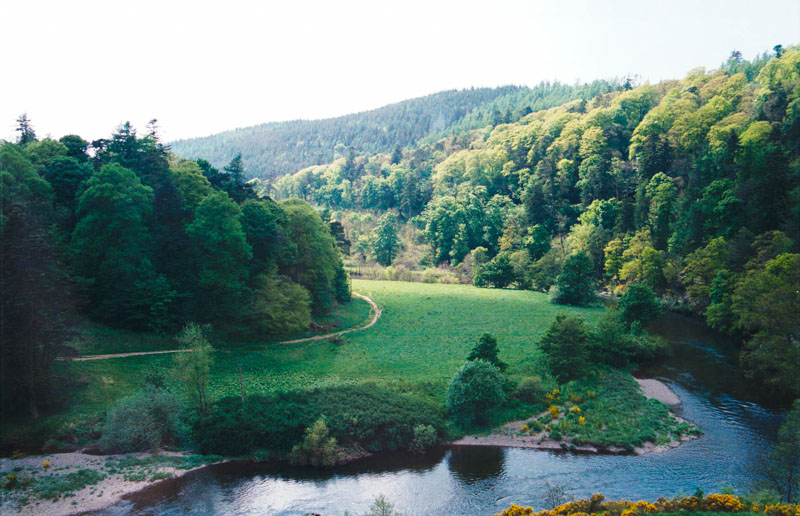 view of the tweed