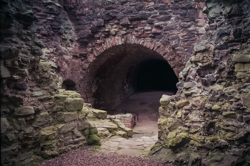 one of the vaulted cellars in the tower