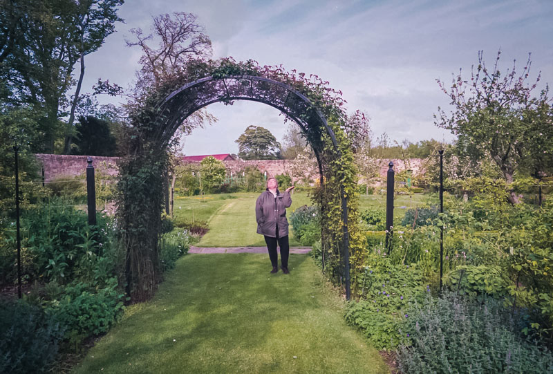 trellised archway in the gardens
