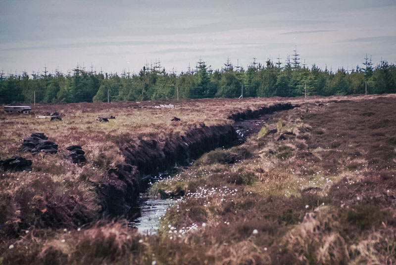 a cut through a working peat bog