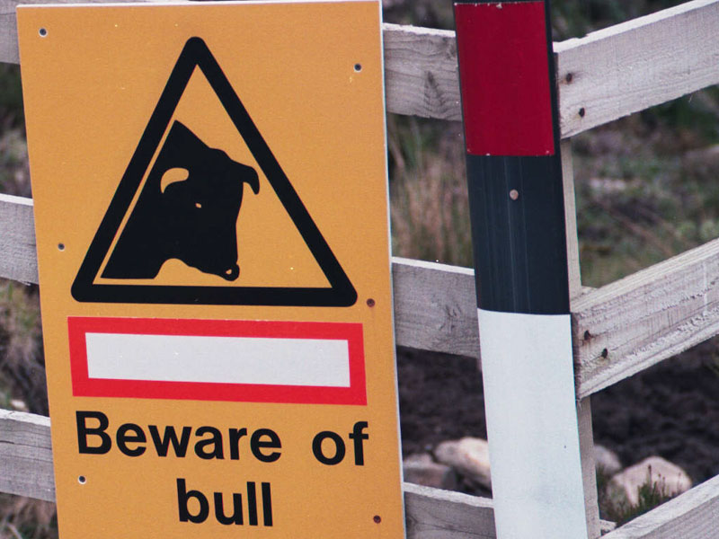 the infamous sign. We never did see the bull