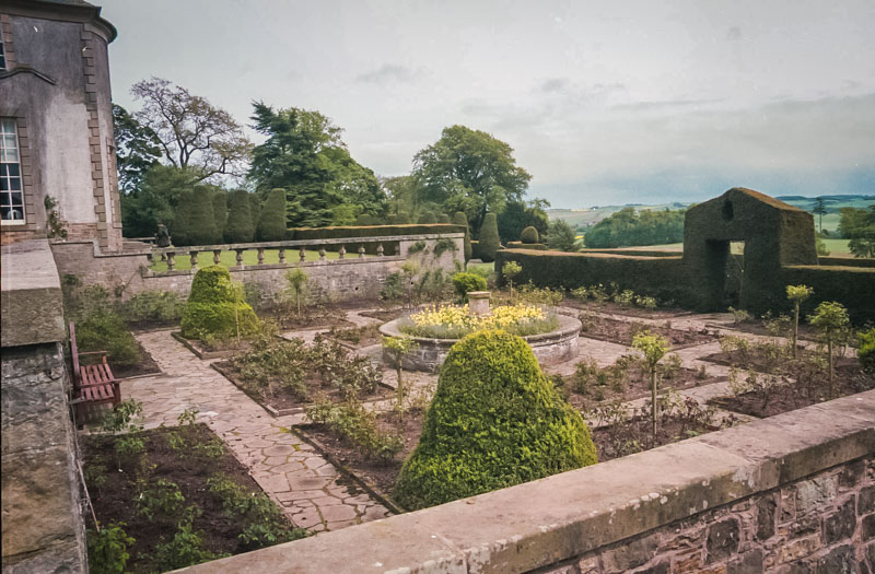 the small walled garden, just starting to turn green